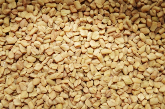fenugreek-1049596_1280
